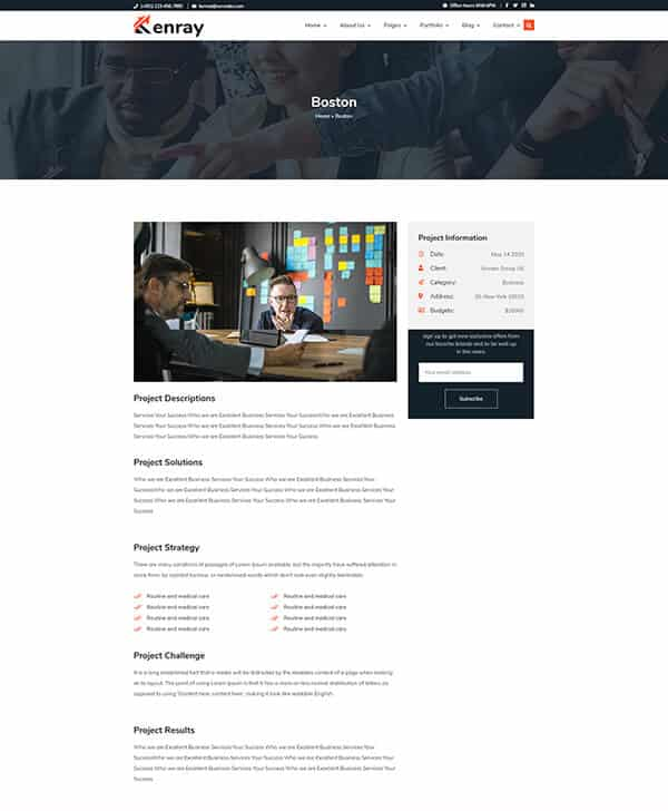 Kenray Consulting Business WordPress theme Portfolio description